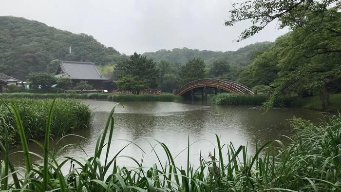 雨の称名寺浄土庭園