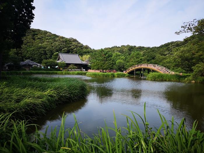 展示鑑賞後に訪れた称名寺浄土庭園