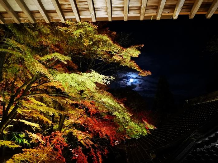 本堂から見た満月
