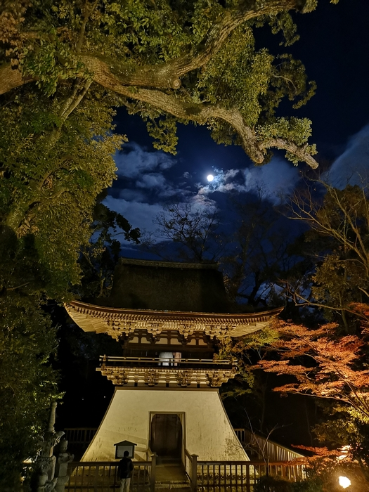 鐘楼と満月