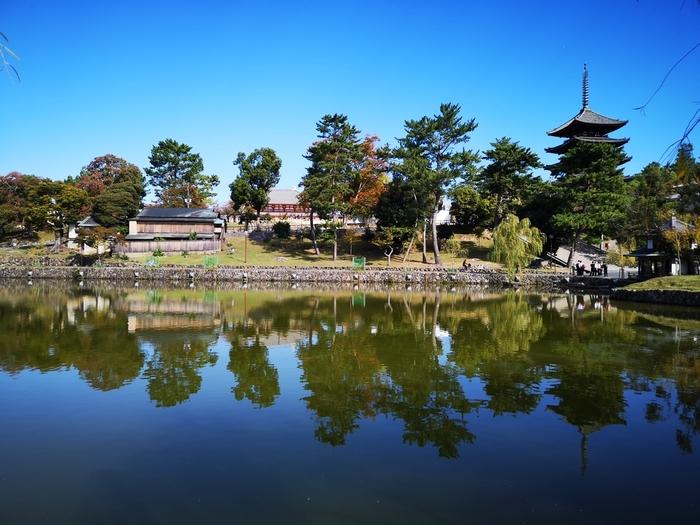 猿沢池からの景色