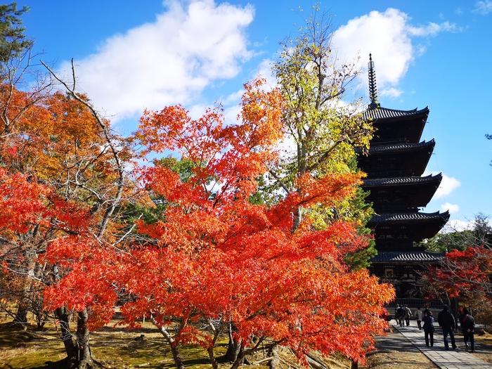 五重塔と紅葉(その1)