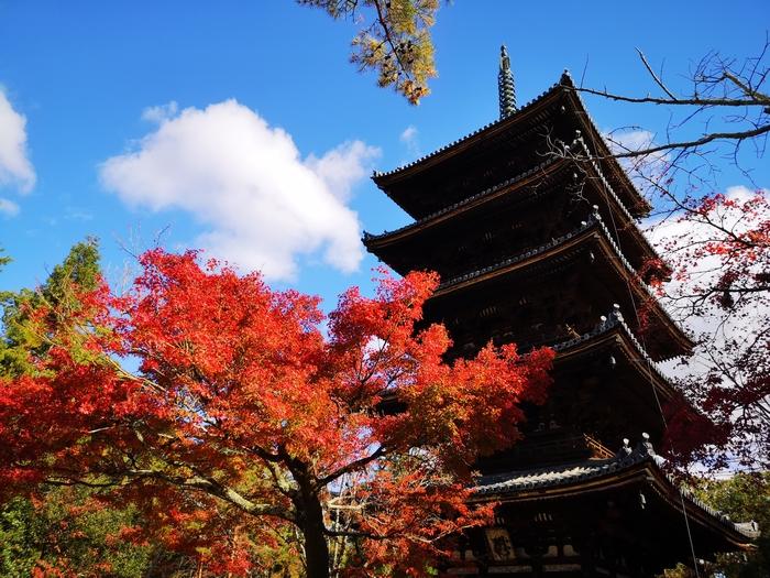 五重塔と紅葉(その2)